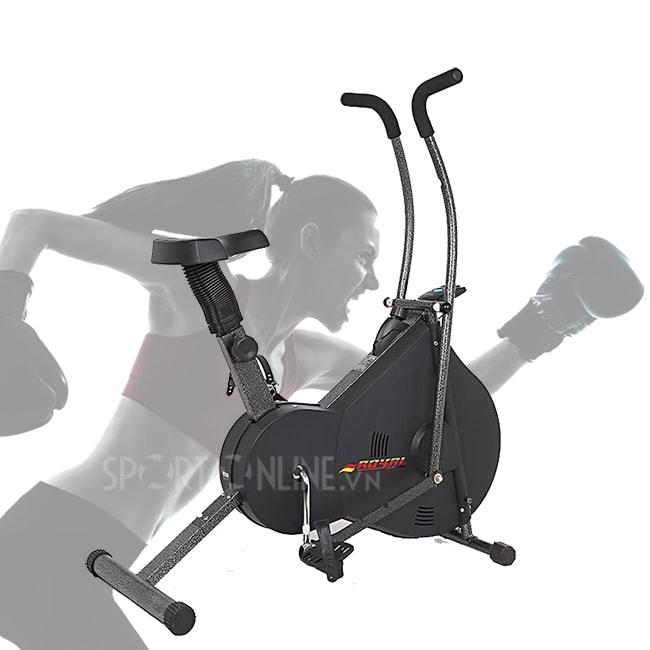 Xe đạp tập thể dục Royal 963 2