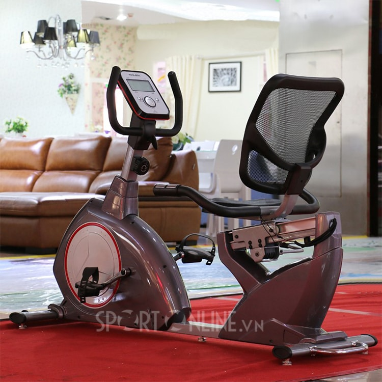 Xe đạp tập phục hồi chức năng YK-B5818R 7