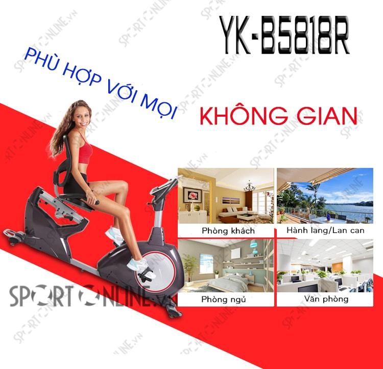Xe đạp tập phục hồi chức năng YK-B5818R 3