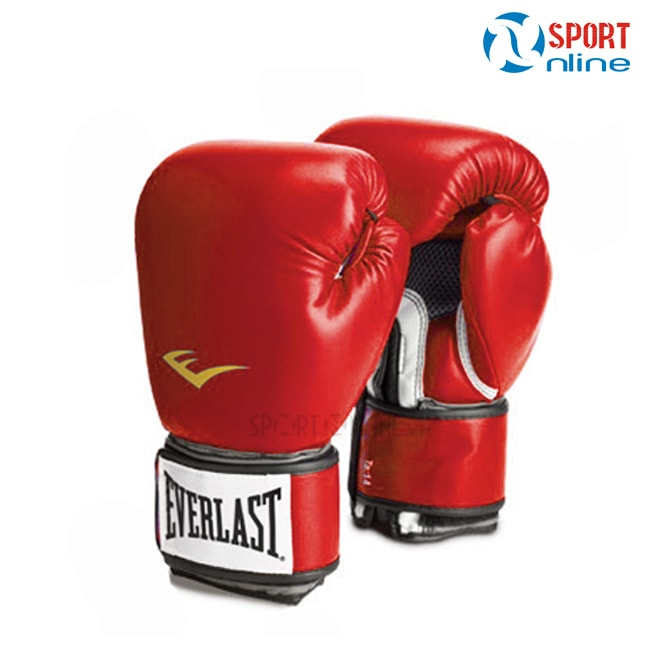gang_boxing-everlast-do