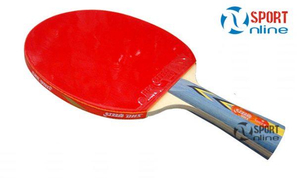 vợt bóng bàn DHS-3002